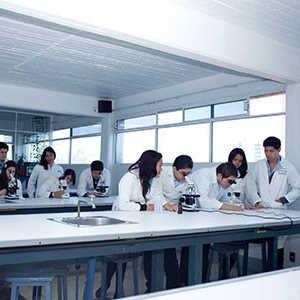 Jóvenes tomando clases en laboratorio del colegio Amado Nervo